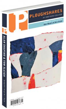 A journal cover with artwork of red, white, and blue fragments put together