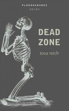 Cover for Ploughshares Solo Dead Zone